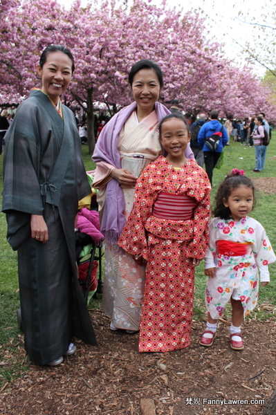Kimono at Sakura cherry blossom in Brooklyn Botanic Garden