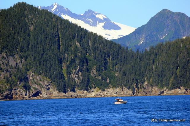 Alaska Kenai Fjords National Park 阿拉斯加奇奈峽灣國家公園