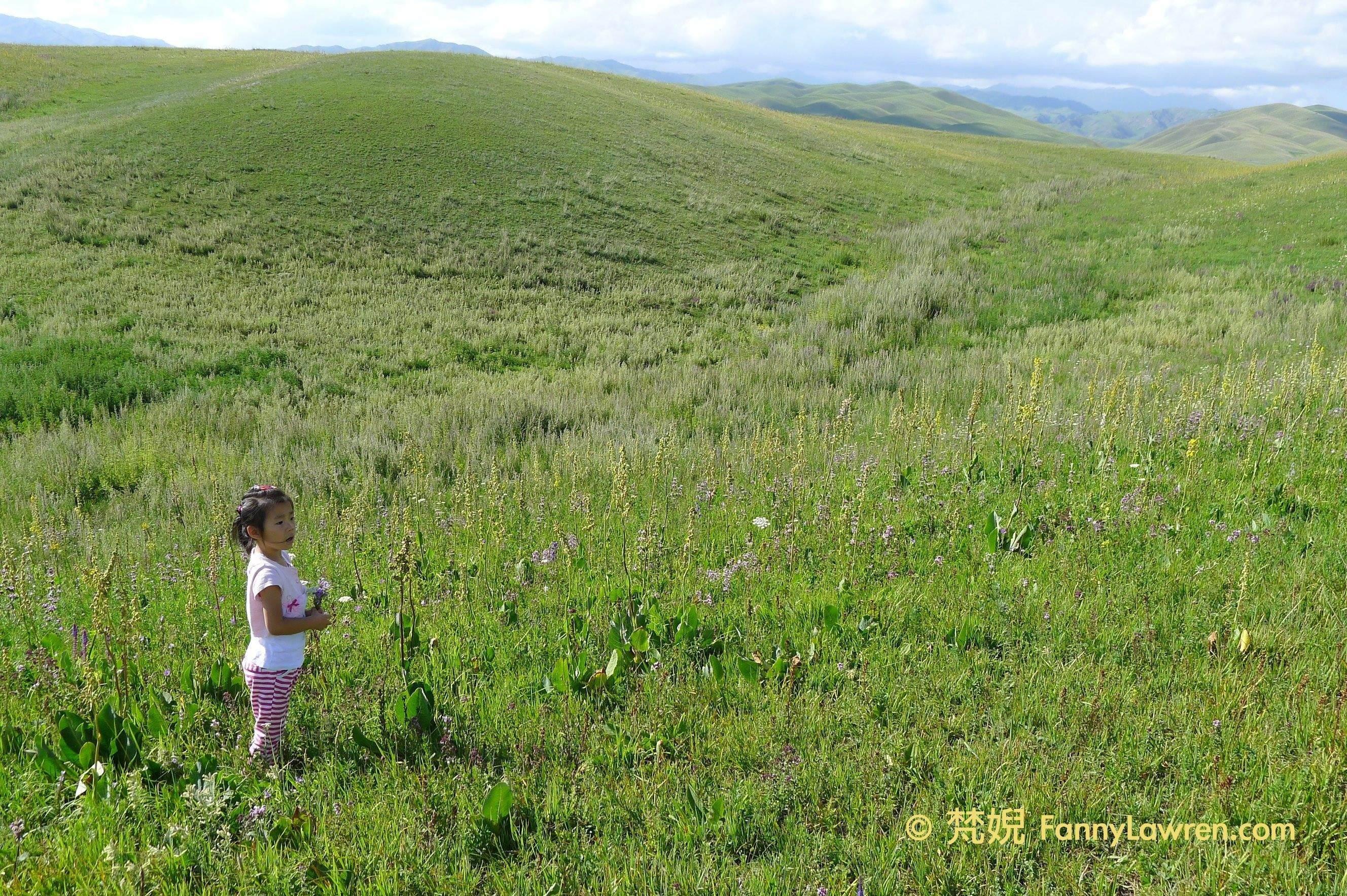 我新認識的小朋友在新疆伊犁的大草原上採花跳舞 2012.07