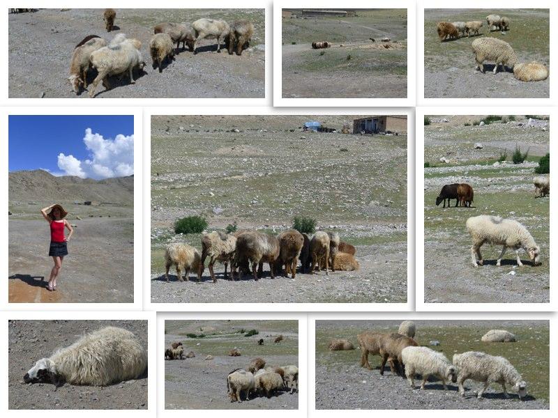 中國新疆博爾塔拉蒙古自治州賽里木湖三台
