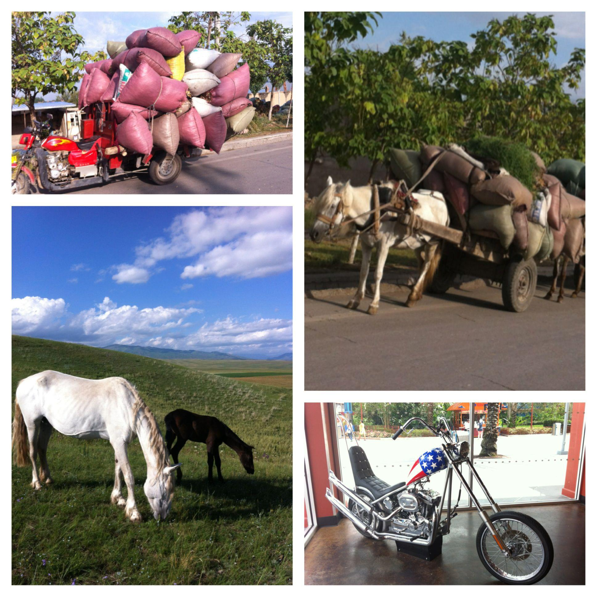 中國新疆昭蘇草原中國西域賽馬場及沿途道路。右下圖為摩托車品牌 Harley Davidson 在美國的店內。
